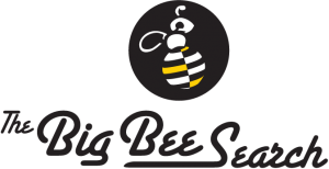 The-Big-Bee-Search-Ltd-Logo-Format-2